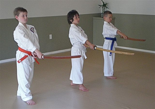 Martial Arts for Teens and Children